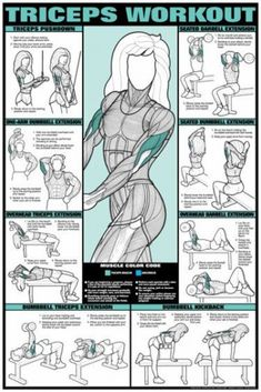 Workout Fitness Chart (Co-Ed) Buy your Triceps Workout Fitness Chart (Co-Ed) at !Buy your Triceps Workout Fitness Chart (Co-Ed) at ! Fitness Gym, Body Fitness, Health Fitness, Fitness Shirts, Health Exercise, Health Club, Exercise Chart, Physical Exercise, Fitness Foods