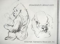 Tips on sketching and drawing animals - take a virtual sketching trip to the Zoo with Ed Hall and get some fabulous tips on drawing and sketching your favorite animals. You can apply these useful ideas to any subject or location!