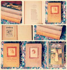 Anne of Green Gables Book Collection.  I have loved them all...