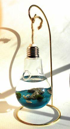 diy dekoration aus draht und birne, aquarium, muschel, wasser