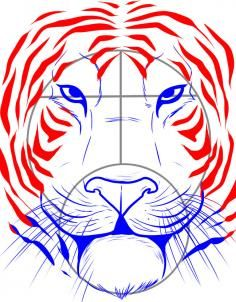 How To Draw A Tiger Face Step 5 Work Drawings Tiger Face