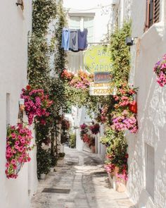 Travel dreams: Weekend Guide to Puglia: Ostuni and Alberobello - Petite Suitcase - Nice! Places Around The World, The Places Youll Go, Places To Go, Places To Travel, Travel Destinations, Travel Diys, Holiday Destinations, Travel Essentials, Budget Travel