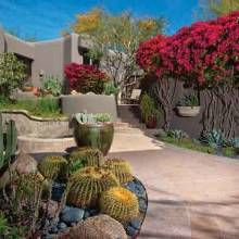 A simple classic backyard landscape design using native plants and