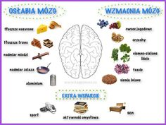 Co lubi nasz mózg?