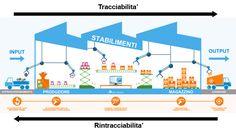 Differenza tra la tracciabilità e la rintracciabilità Process Map, Bar Chart, Diagram, Bar Graphs