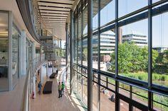 Gallery of Oeconomicum / Ingenhoven Architects - 3