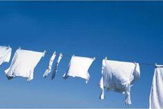 Γαριασμένα ασπρόρουχα; Ποτέ πια, με ένα απλό κόλπο Το επαναλαμβανόμενο πλύσιμο και τα φορτωμένα με σκληρά χημικά προϊόντα που κυκλοφορούν στο εμπόριο, συμβά Laundry Hacks, White Outfits, Home Remedies, Cleaning Hacks, Bed Pillows, Outdoor Decor, Animals, Oui, Images