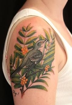 Audubon bird on branch