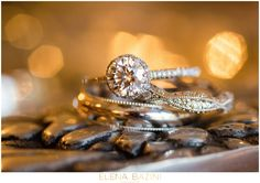 Chicago Botanic Garden Wedding  Wedding Rings  Diamonds  Macro Photography  Jewelry Photography  Wedding Ring Inspiration Clementine Custom Events