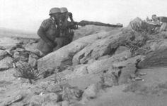 Fallschirmjager Ramcke brigade - El Alamein september 1942, pin by Paolo Marzioli