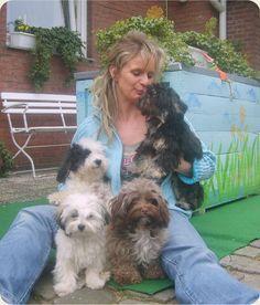 Bolonka Zwetna, love, so cute dogs