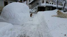 c'era una volta una macchina, #Abbateggio, #Abruzzo, # neve Snow, Outdoor, Outdoors, Outdoor Games, The Great Outdoors, Eyes, Let It Snow