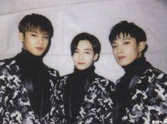 Scan - Mingyu, Jeonghan & DK