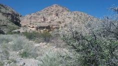 Robledo Mountains, slot canyon.