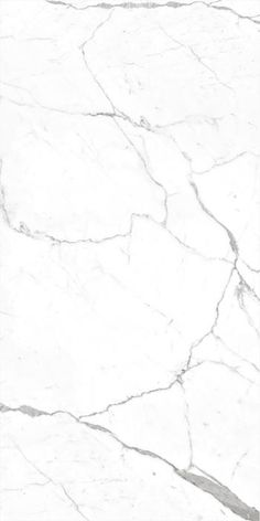 Carrara White Marble Effect Polished Porcelain Tile 300 x Polished White Marble Effect Rectified Porcelain Tile 300 x White Tile Texture, Marble Texture Seamless, Floor Texture, Stone Texture, Calacatta Tile, Marble Tiles, Carara Marble, White Marble Bathrooms, Polished Porcelain Tiles