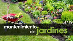 Servicios Profesionales de Jardinería desde 1975. 40 años de experiencia transformando espacios sin vida en verdaderos Oasis de Descanso y Relajación.