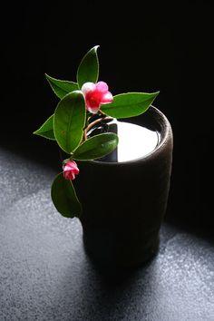 Ikebana - vivificação das flores.
