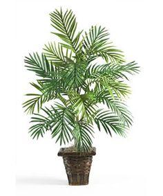 Enjoy the beauty of palm leaves no matter where you live with this beautiful areca palm silk plant. Crafted from durable polyester, this faux house plant is easy to clean. Since it requires no waterin                                                                                                                                                     More