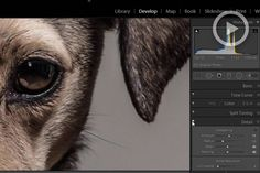 How To Add Detail & Texture Entirely In Lightroom For An Hd Look #photography #lightroom https://www.slrlounge.com/how-to-add-detail-texture-entirely-in-lightroom-for-an-hd-look/