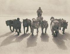 A Rare Look at Antarctica, 1911-1914 | Brain Pickings