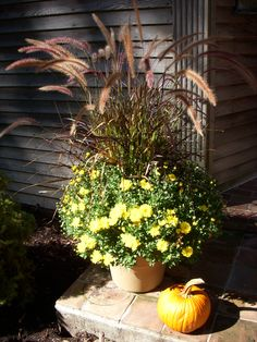 Autumn splendor--Randee Malmberg home and photo.