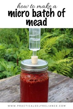 How to make a micro quart sized batch of raspberry mead (honey wine) with your summer foraged raspberries! Beer Brewing, Home Brewing, Tequila, Raspberry Beer, Raspberry Liquor Recipe, Mead Wine, Mead Recipe, Honey Wine, Homemade Liquor