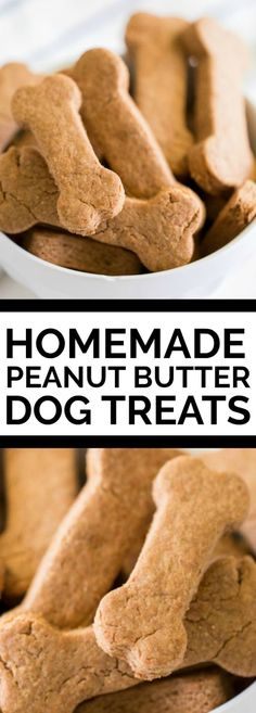 These easy, healthy Homemade Dog Treats are a special recipe to serve your favorite pet! Homemade dog treats are a simple way to let your little puppy know they're loved. This easy, healthy homemade dog Homemade Dog Cookies, Homemade Peanut Butter, Homemade Dog Food, Homemade Dog Biscuits, Peanut Butter Dog Biscuits, Recipe For Peanut Butter Dog Treats, Doggy Treats Recipe, Homemade Recipe, Puppy Treats