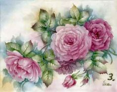 Study of Pink Double Roses for china painters and porcelain artists, available online in seminars and studies from Charlene Ferrell Whitler porcelain artist and teacher
