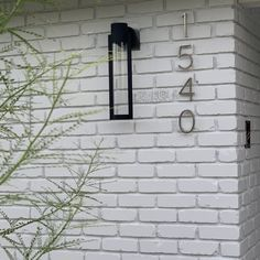 Erick LED Outdoor Armed Sconce & Reviews | AllModern Led Outdoor Wall Lights, Outdoor Wall Sconce, Outdoor Walls, Outdoor Lighting, Back Deck, Energy Star, Bright Lights, One Light, All Modern