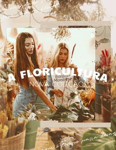 mundololita Nova, Blues, Movies, Movie Posters, Art, World, Bonjour, Art Background, Films