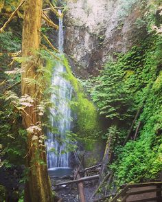 Marymere falls in Olympic National park. A short hike from Lake Crescent, WA