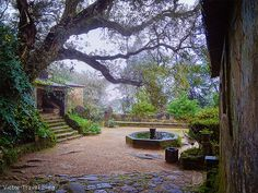 The inner yard of the Convent of the Capuchos. Sintra, Portugal.