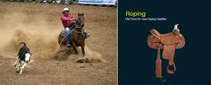 Roping Saddles: Heavy, sturdy saddle that usually has a thicker horn for securing a rope, low cantle, and slick fork that allows rider to dismount quickly when needed.