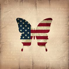 Butterfly Stars and Stripes by Steffi~findsFUNDSTUECKE