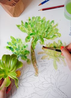 Succulent Watercolour Painting Class with Dawn Tan