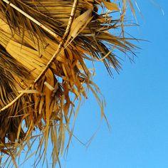In the shade down at Kalafatis Beach in Mykonos, Greece.. #mykonos #greece #kalafatis #travel #beach #shade #mediterranian #coastline #kalafatisbeach #colourful #contrast #sunshine #ilovegreece #bluesky