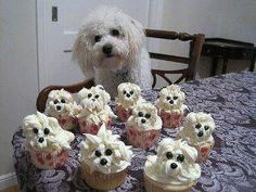 Doggy with doggy baby shower cupcakes