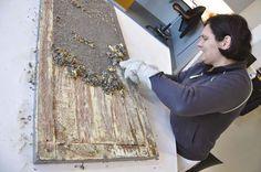 Oude verf verwijderen: hoe ga je te werk? - Colora Blog