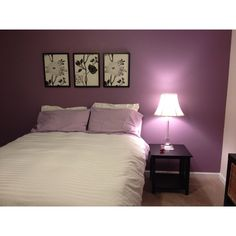 Purple accent wall for the master bed room.   Love it.