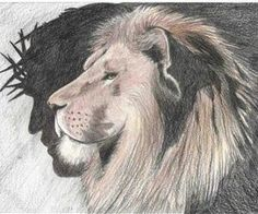 the christ is the lion
