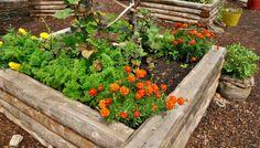 11 оригинальных идей для дачи о которых мечтает любой садовод | ландшафтный дизайн