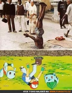 """24 Hilarious Memes To Assassinate Your Boredom - Funny memes that """"GET IT"""" and want you to too. Get the latest funniest memes and keep up what is going on in the meme-o-sphere. Wtf Funny, Funny Relatable Memes, Hilarious, Meanwhile In Australia, Pokemon Memes, Fresh Memes, Big Bird, Offensive Memes, Edgy Memes"""