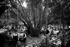 Decoração #wedding #casamento