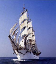 "Full-Rigged Ship ""Danmark"""