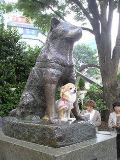 ハチ公とチワワ(渋谷) Hachi-ko and Chihuahua, Shibuya, Tokyo, Japan