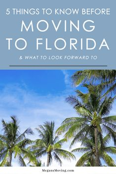 Thinking about moving to Florida? Here are some things to look forward to, as well as some facts you should know about the Sunshine State to be better prepared for the experience. Moving To Miami, Moving To Florida, Old Florida, Florida Travel, Florida Home, Central Florida, South Florida, Clearwater Florida, Sarasota Florida