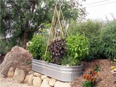 Container vegetable gardening and Square-Foot Gardening Method can yield the same crop as a row garden but in a fifth of the space.