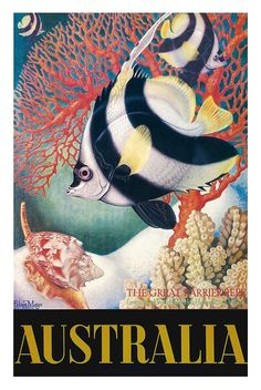 Australia - Great Barrier Reef - Longspined Butterfly-Fish and Heron Island Volute 2 COPIES - Vintage World Travel Poster by Eileen Mayo - Master Art Print - x Sunshine Coast, Australian Vintage, Poster Art, Layout, Canvas Prints, Art Prints, Canvas Art, Vintage Travel Posters, Vintage Airline