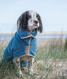 So practical when coming in from the garden or after a paddle! Ruff and Tumble Dog Drying Coats ® are modelled on horse blankets. They go on over your dogs head, tailored, with straps that fasten simply with Velcro.