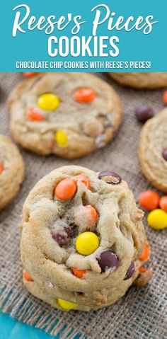 Reese's Pieces Cookies are a basic chocolate chip cookie filled with Reese's Pieces instead of chocolate chips! This is my favorite chocolate chip cookie recipe made even better with the peanut butter crunch of the candy. Chocolate Chip Cookies, Peanut Butter Cookies, Chocolate Chips, Cookie Pops, Reese's Pieces Cookies, Reese's Cookies, Crazy Cookies, Fancy Cookies, Sugar Cookies